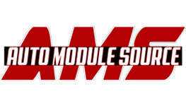 Auto Module Source Logo